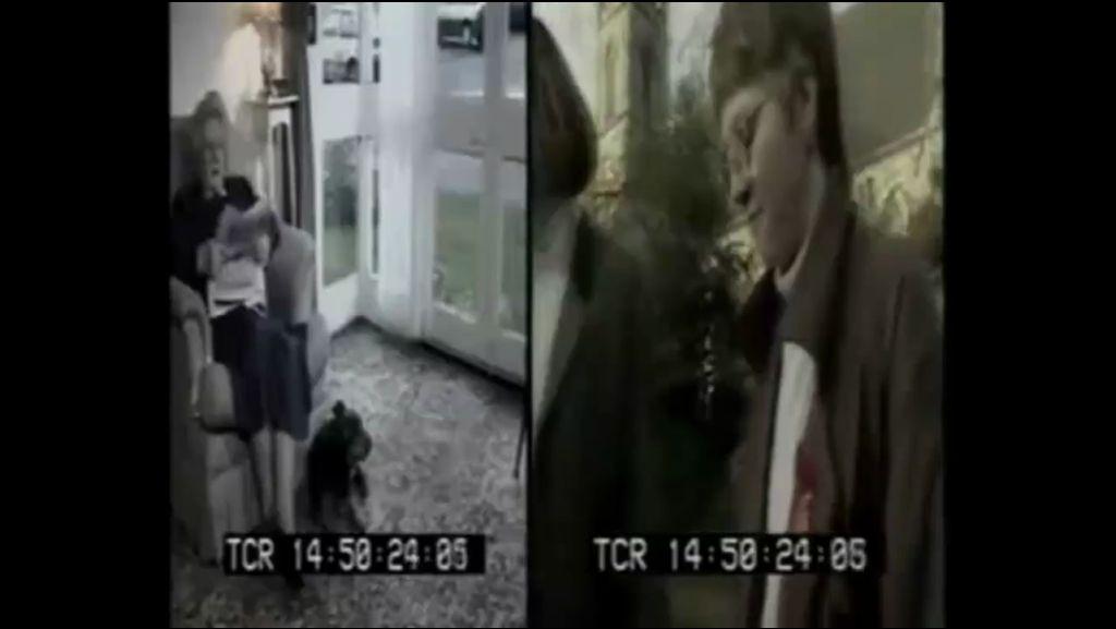 Video 3 / Hund